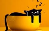 Как понять, что вы хронически не высыпаетесь: 4 советы