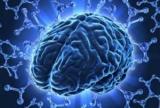 Очаговые изменения вещества мозга плечо персонажа: симптомы, диагностика и лечение